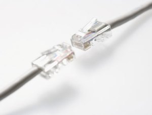 Two ethernet cords, Fishbowl Blog