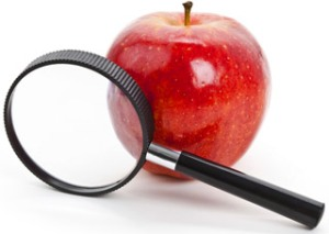 Apple and a magnifying glass, Fishbowl Blog